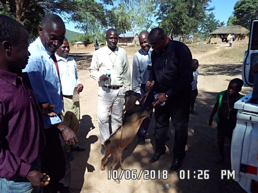 The Vicar General receiving a goat as gift from the Juma Community