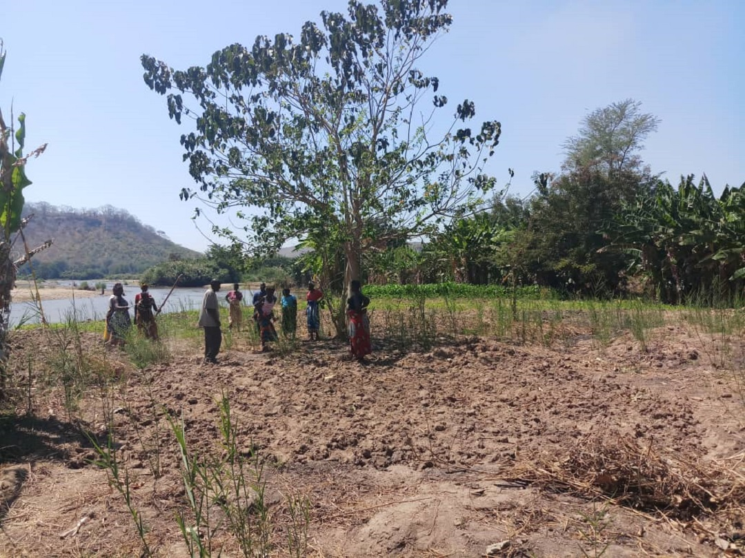 Traditional Leaders Handover Handover 30 Hectares to Chinunu Scheme