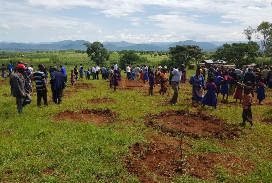 Part of the crowd during the tree planting launch