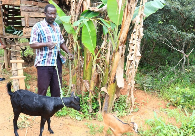 VSL groups and Goat Pass on Program; A Tool for Defeating Poverty