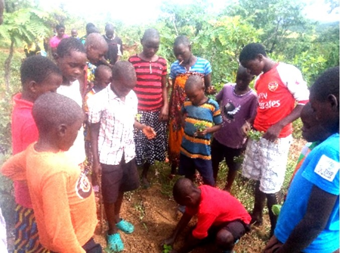 Sunday School Children Plant 167 Trees at St Charles Lwangwa Substation in St Michael's Parish