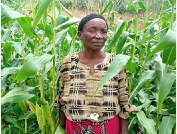 Elderly Woman Celebrates New High Yielding Bean Variety (NUA 45)