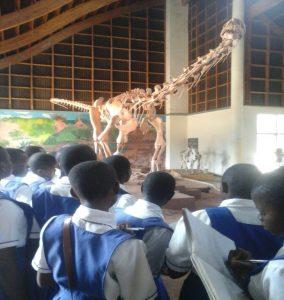 St. Mary's Karonga Girls Secondary School in Educational Visit to Karonga Museum