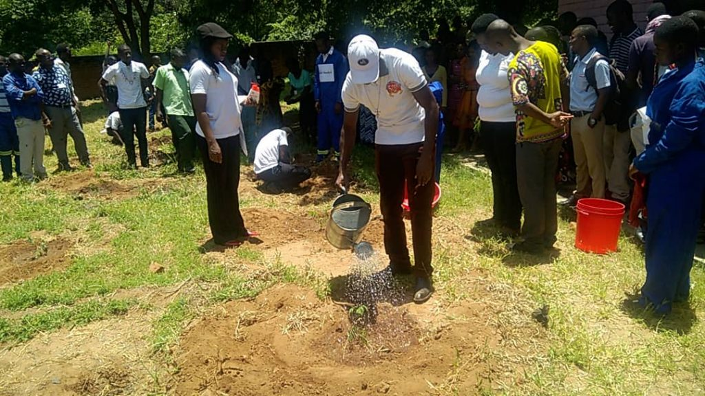Picture of Brother Pachalo watering the tree he planted