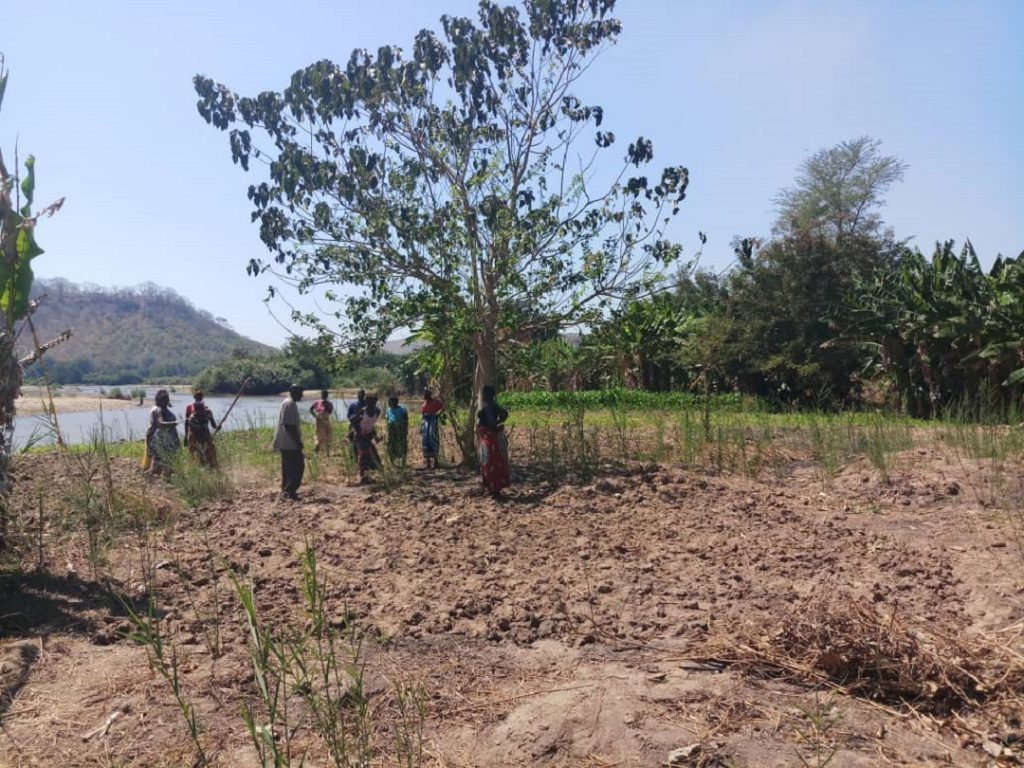 File photo: Farming activities of the Development Desk