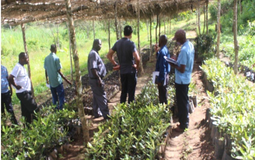 The visitors at macadamia nursery. James Kasambala explaining to Keith Polo and Fr Bundi what it takes to raise one seedling of macadamia nuts